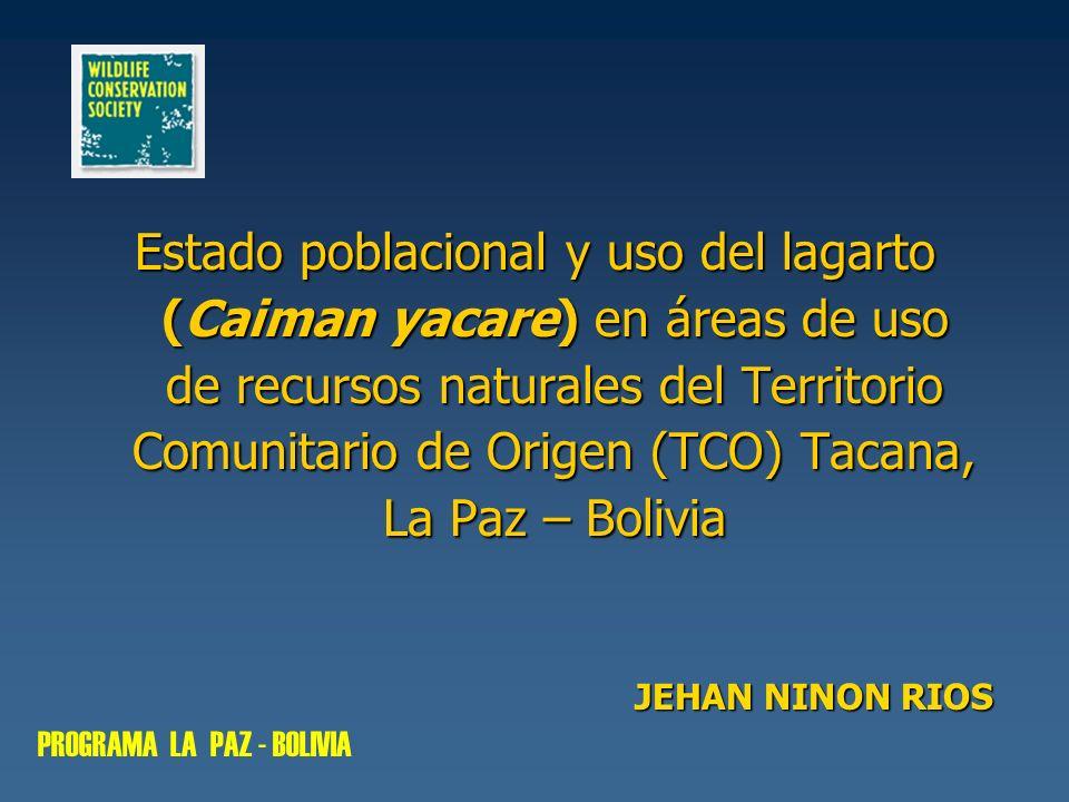 Estado poblacional y uso del lagarto (Caiman yacare) en áreas de uso de recursos naturales del Territorio Comunitario de Origen (TCO) Tacana, La Paz – Bolivia