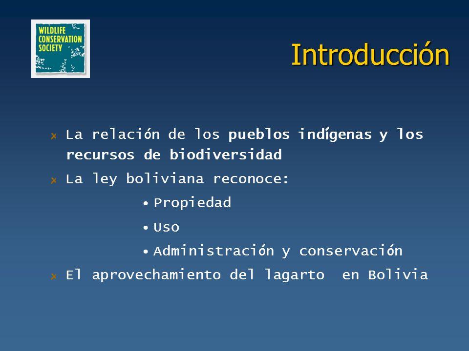 Introducción La relación de los pueblos indígenas y los recursos de biodiversidad. La ley boliviana reconoce: