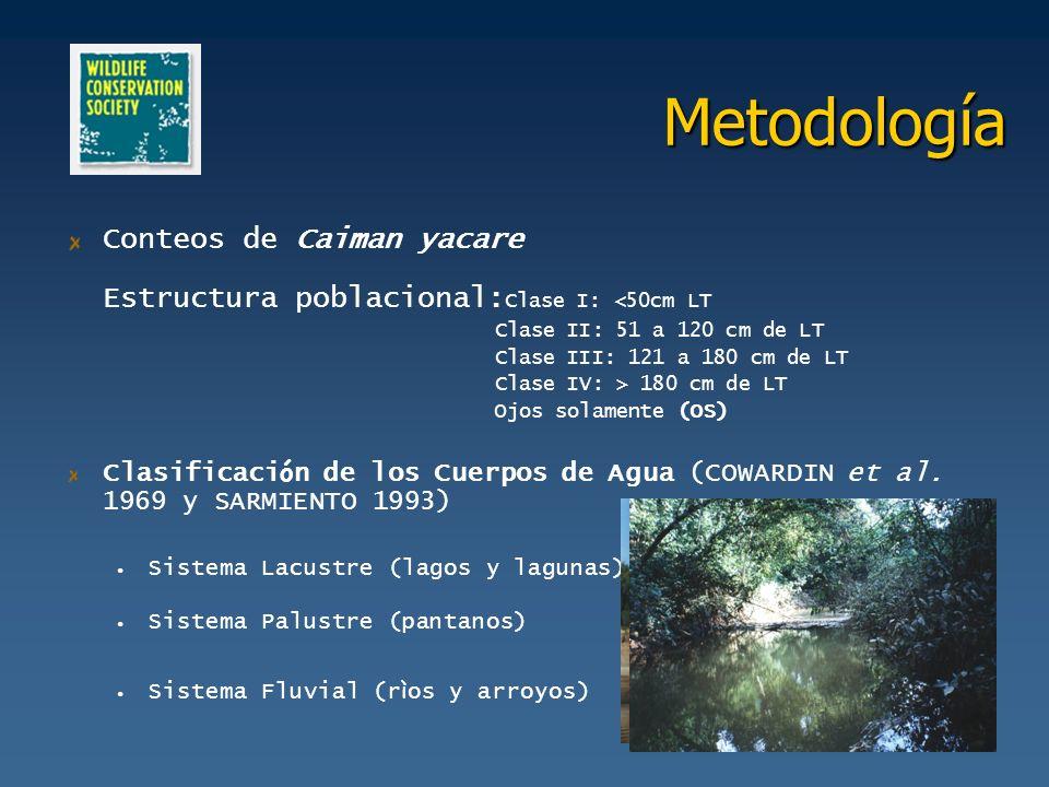 Metodología Conteos de Caiman yacare