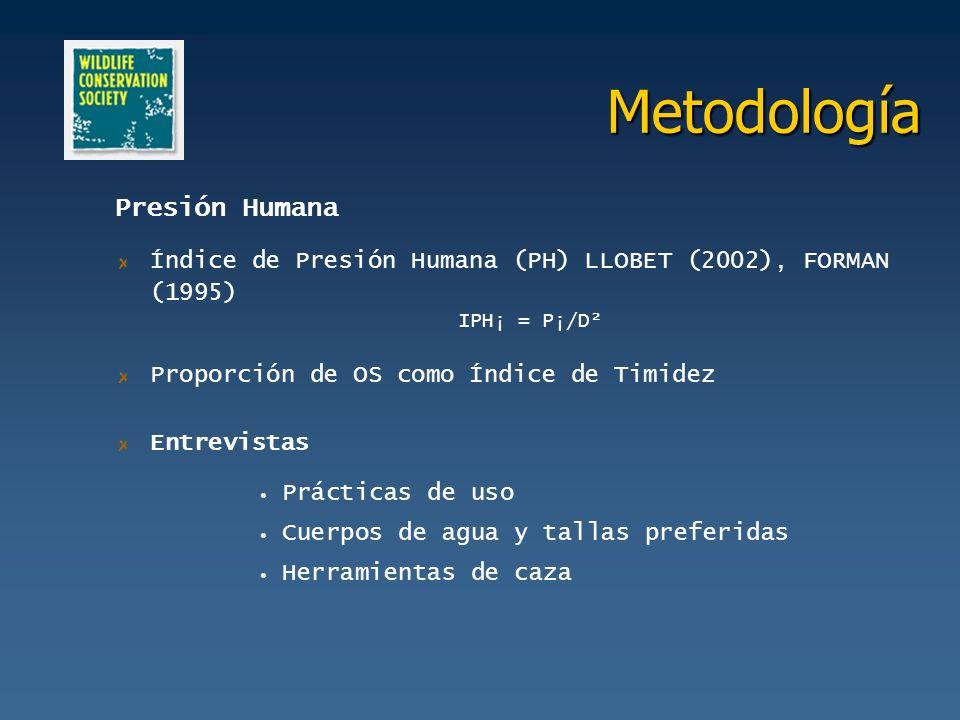 Metodología Presión Humana