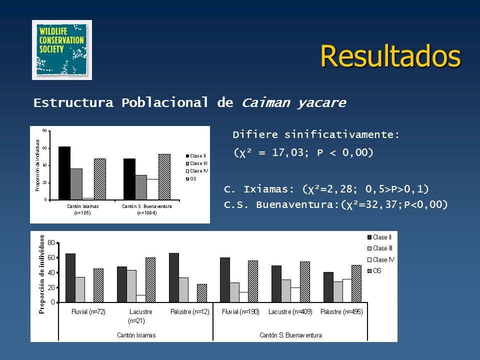 Resultados Estructura Poblacional de Caiman yacare