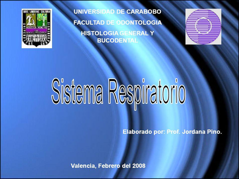 Sistema Respiratorio UNIVERSIDAD DE CARABOBO FACULTAD DE ODONTOLOGIA