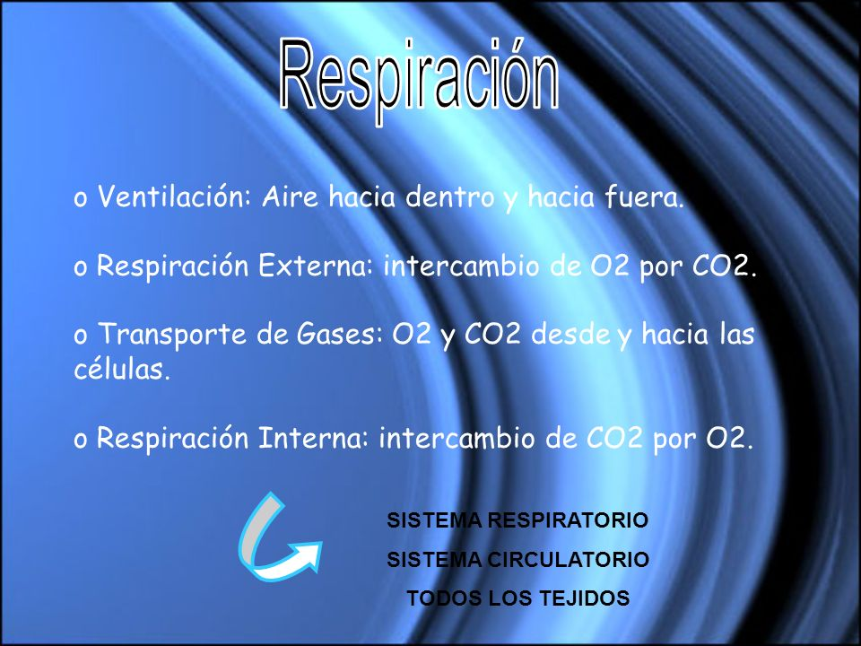 Respiración Ventilación: Aire hacia dentro y hacia fuera.