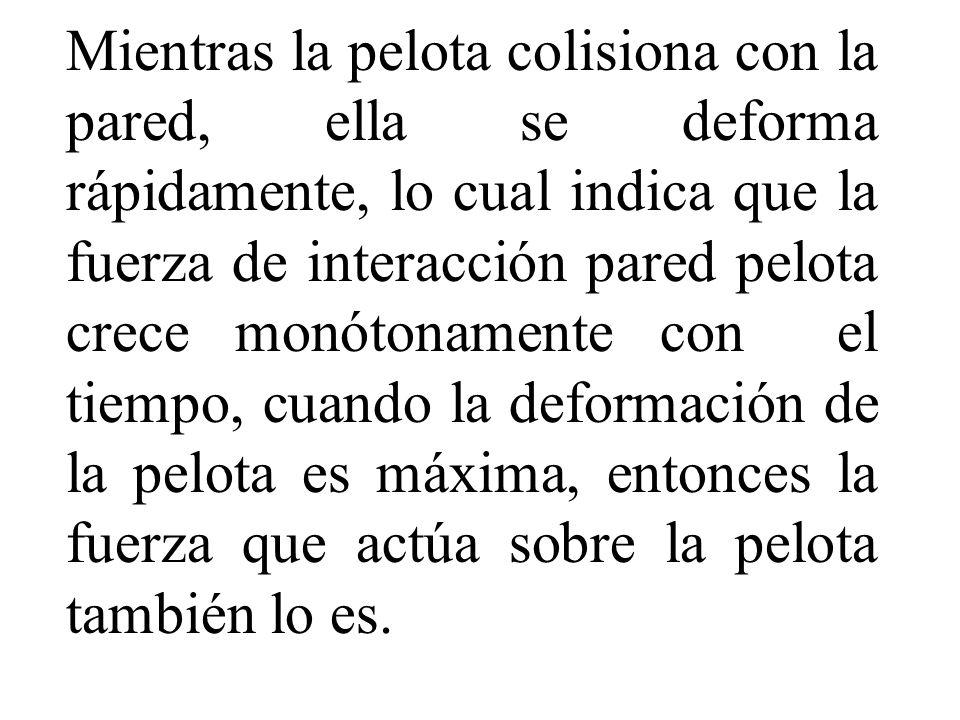 Mientras la pelota colisiona con la pared, ella se deforma rápidamente, lo cual indica que la fuerza de interacción pared pelota crece monótonamente con el tiempo, cuando la deformación de la pelota es máxima, entonces la fuerza que actúa sobre la pelota también lo es.