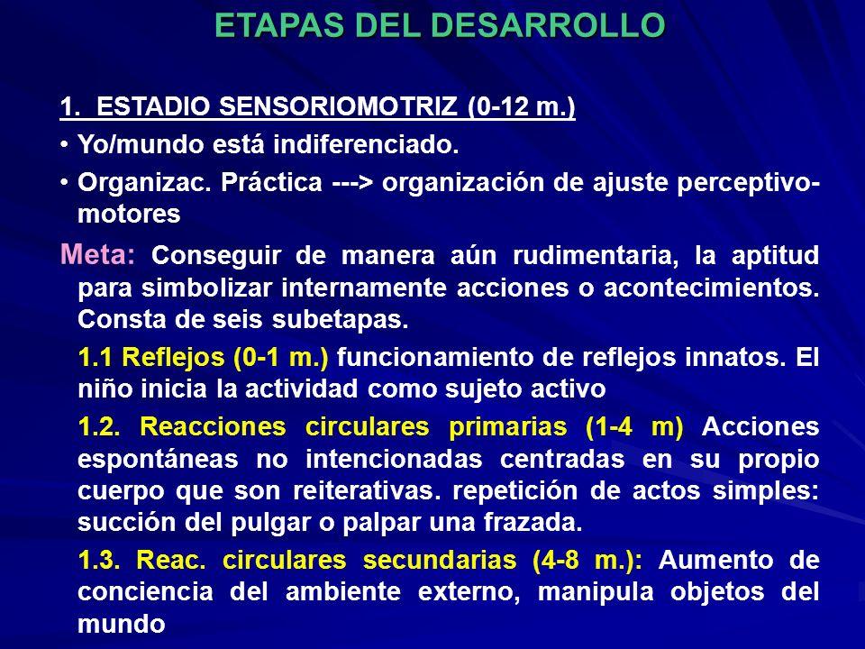 ETAPAS DEL DESARROLLO 1. ESTADIO SENSORIOMOTRIZ (0-12 m.) Yo/mundo está indiferenciado.