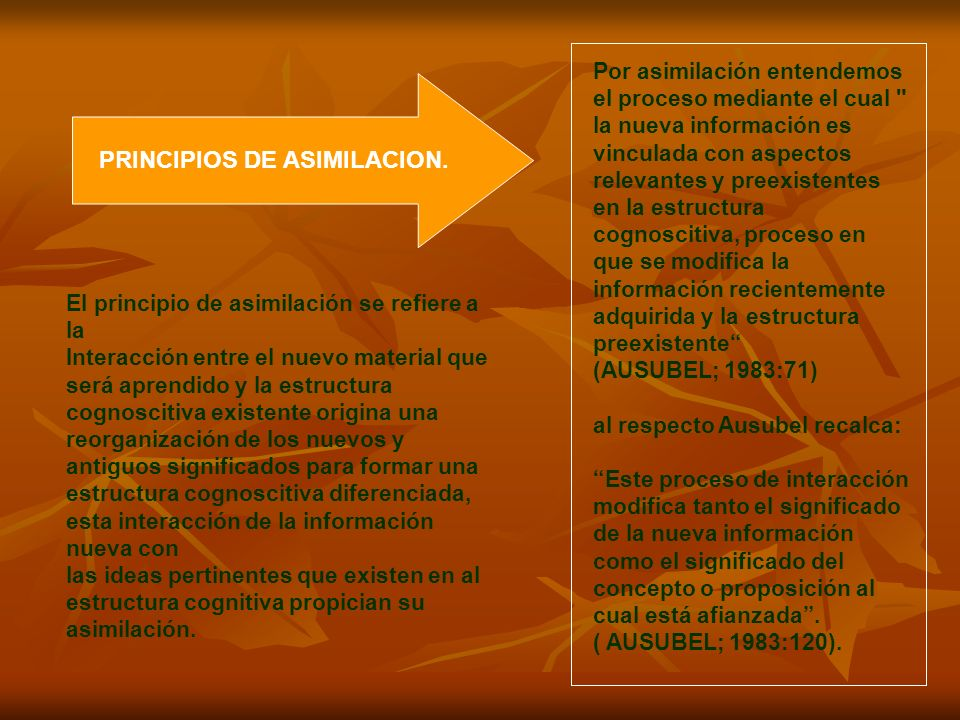 PRINCIPIOS DE ASIMILACION.