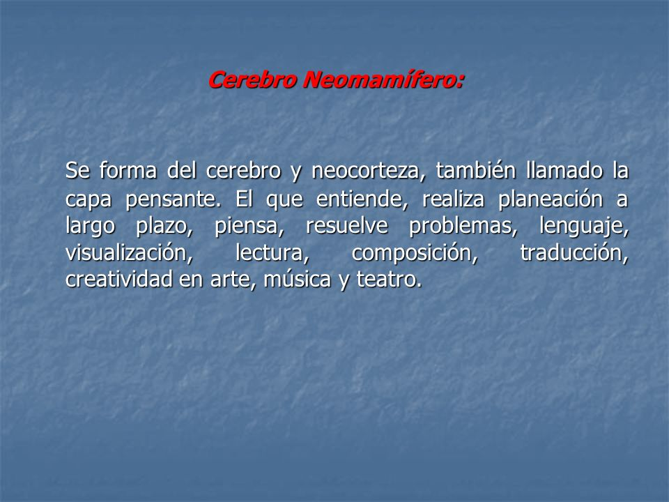 Cerebro Neomamífero: