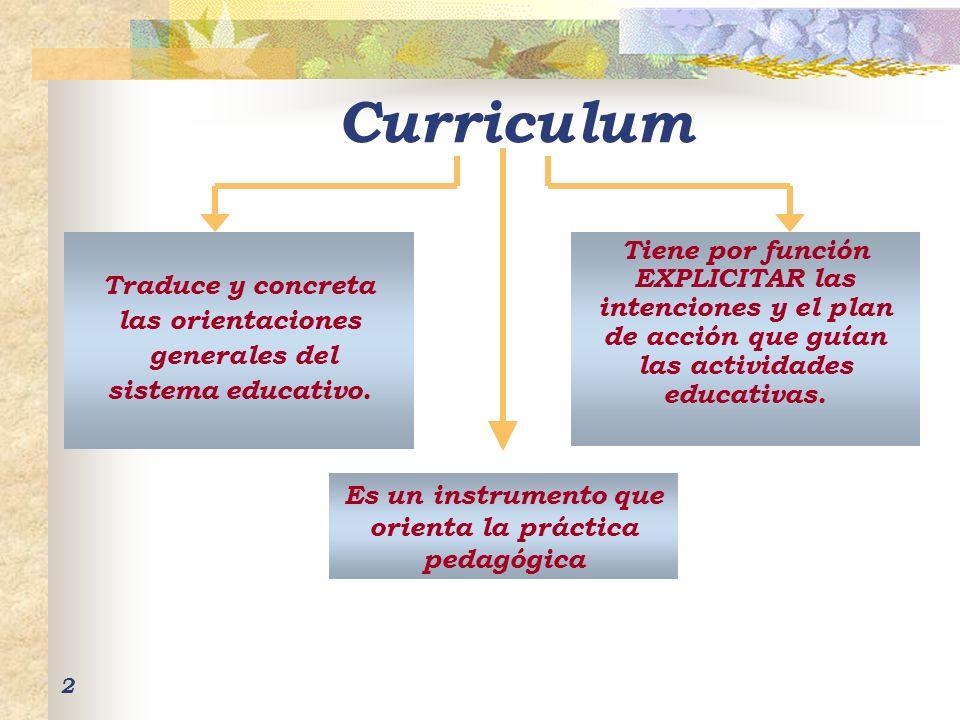 Es un instrumento que orienta la práctica pedagógica