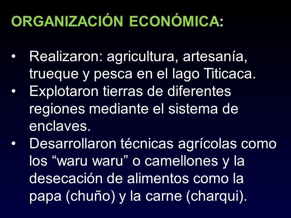 ORGANIZACIÓN ECONÓMICA: