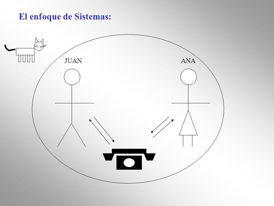 El enfoque de Sistemas: