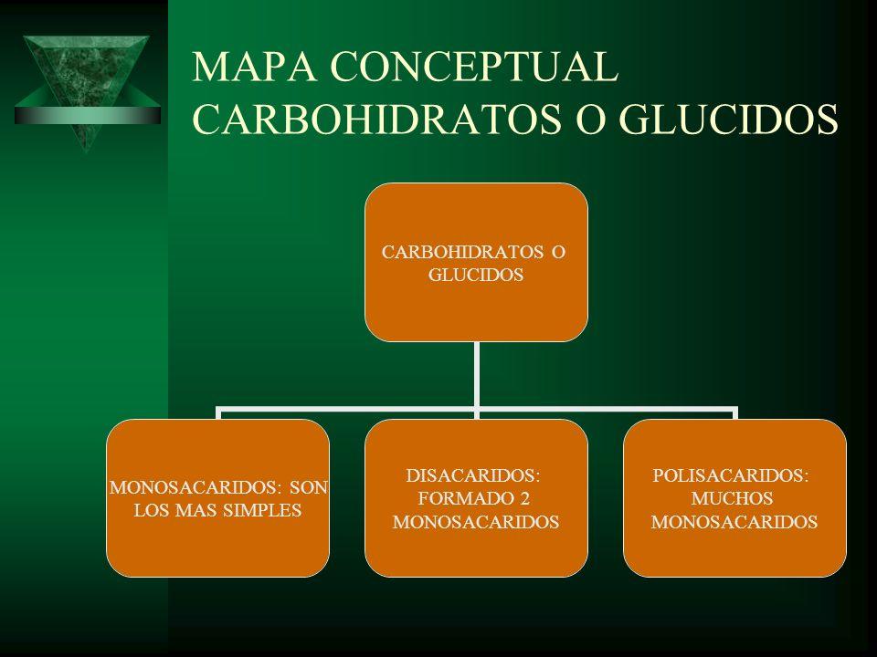 MAPA CONCEPTUAL CARBOHIDRATOS O GLUCIDOS