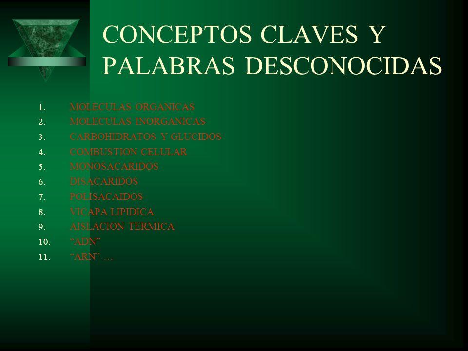 CONCEPTOS CLAVES Y PALABRAS DESCONOCIDAS