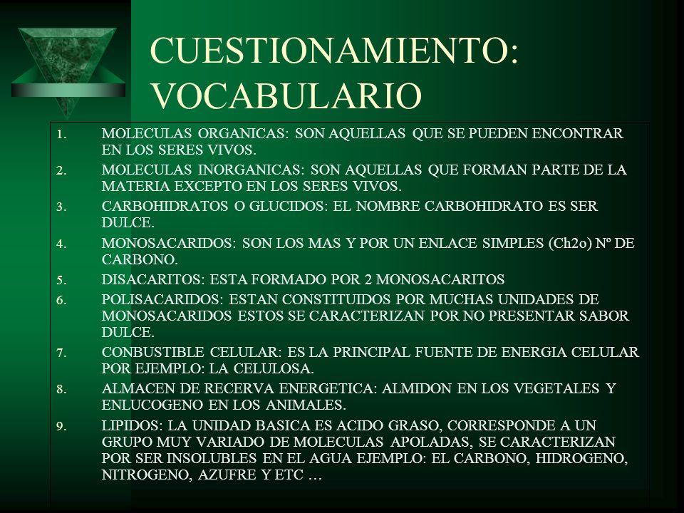 CUESTIONAMIENTO: VOCABULARIO