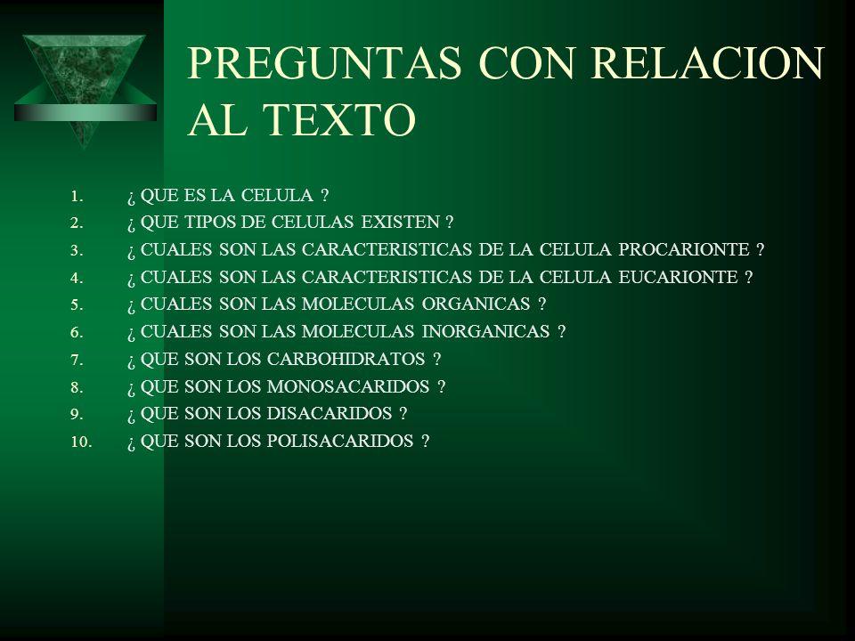 PREGUNTAS CON RELACION AL TEXTO