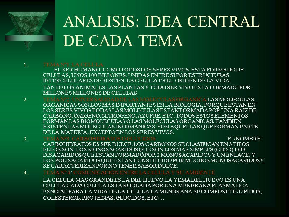 ANALISIS: IDEA CENTRAL DE CADA TEMA