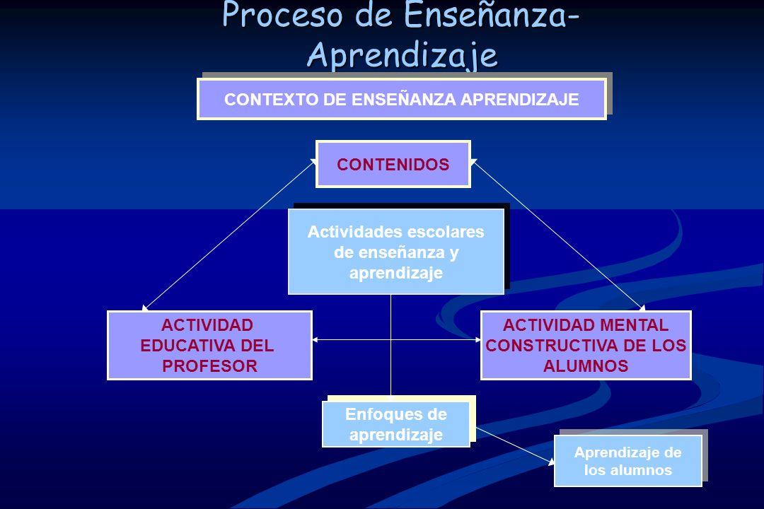 CONTEXTO DE ENSEÑANZA APRENDIZAJE Actividades escolares