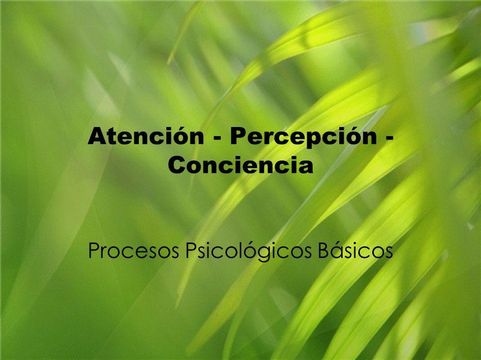 Atención - Percepción - Conciencia