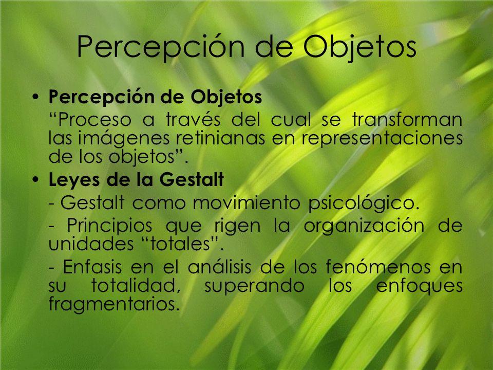 Percepción de Objetos Percepción de Objetos