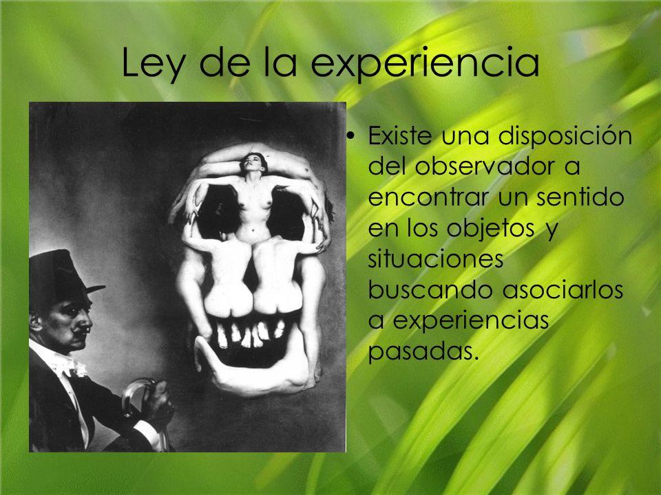 Ley de la experiencia