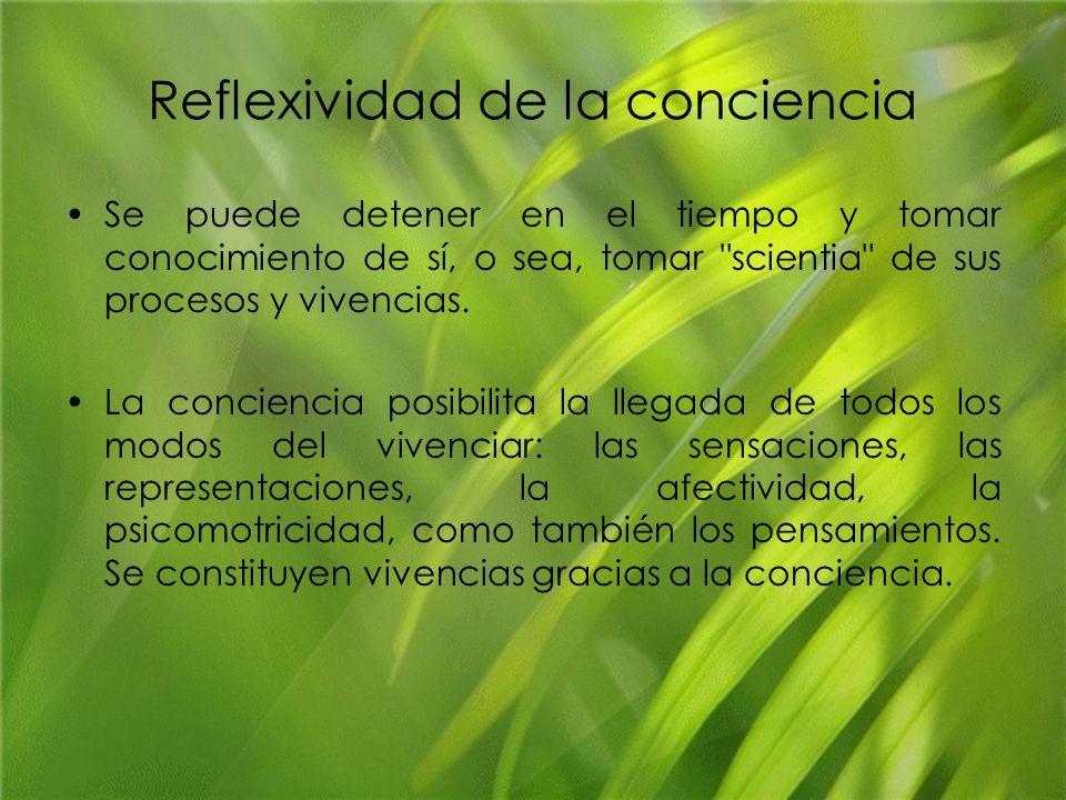Reflexividad de la conciencia
