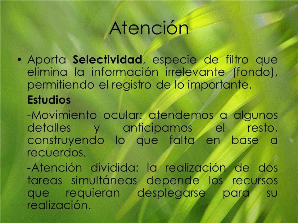 Atención Aporta Selectividad, especie de filtro que elimina la información irrelevante (fondo), permitiendo el registro de lo importante.