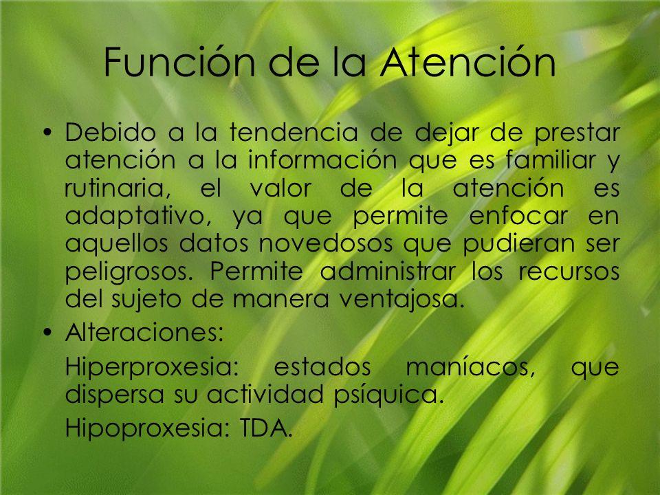 Función de la Atención