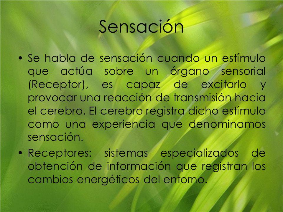 Sensación