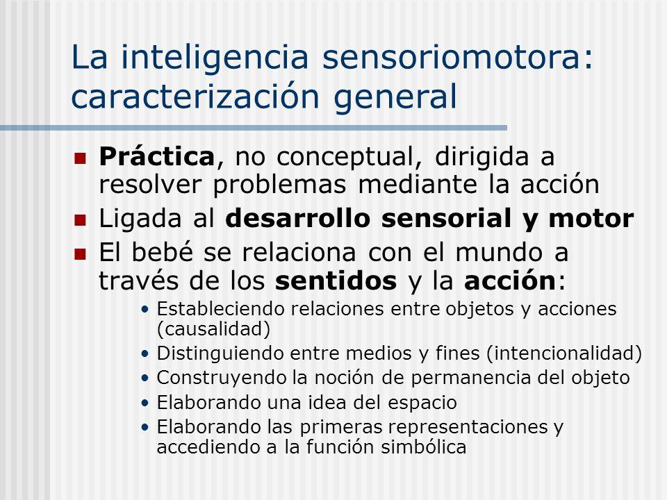 La inteligencia sensoriomotora: caracterización general