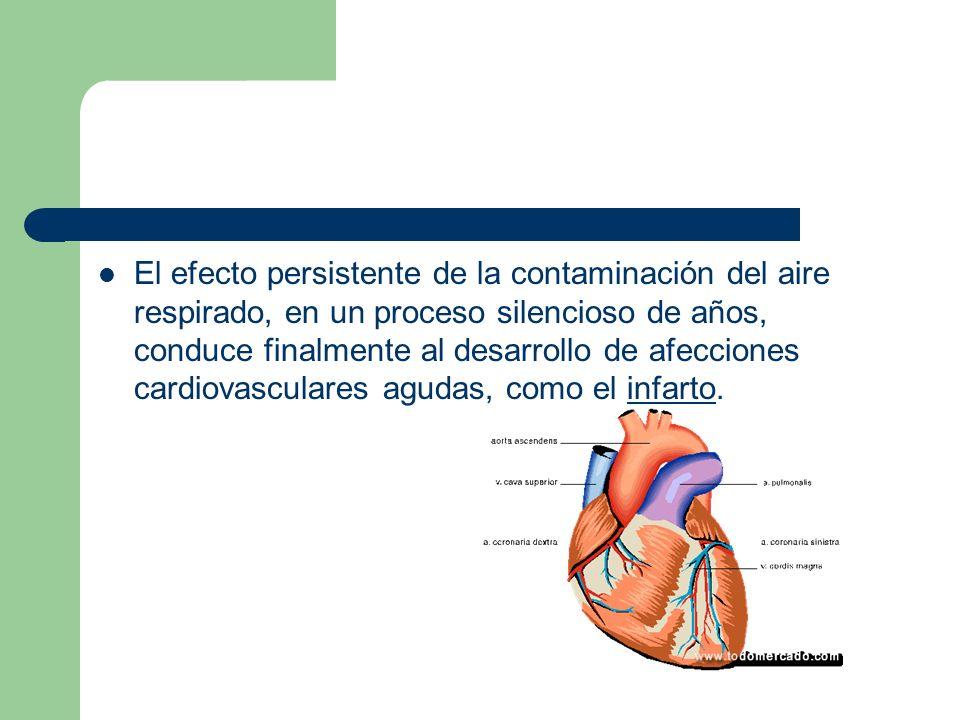 El efecto persistente de la contaminación del aire respirado, en un proceso silencioso de años, conduce finalmente al desarrollo de afecciones cardiovasculares agudas, como el infarto.