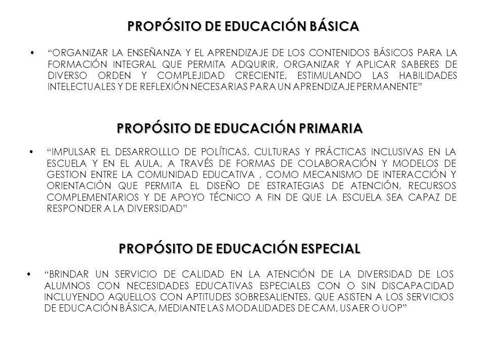 PROPÓSITO DE EDUCACIÓN BÁSICA