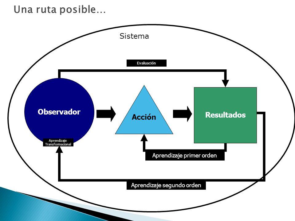 Una ruta posible… Sistema Observador Acción Resultados