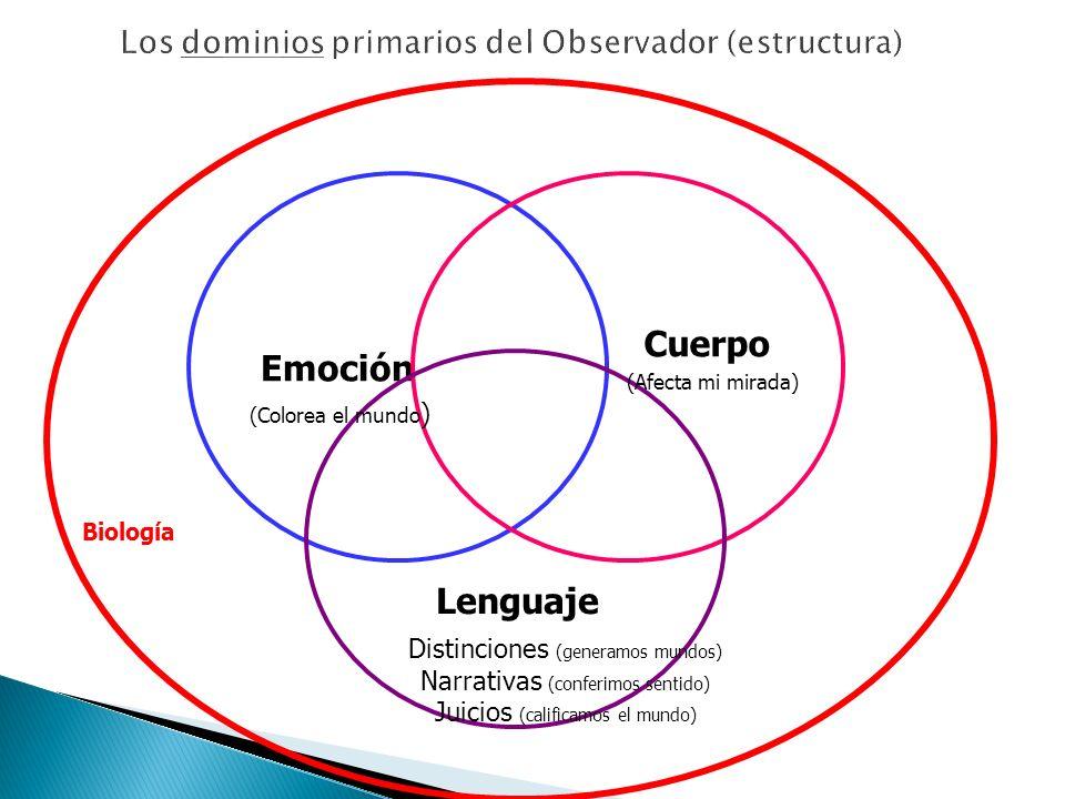 Los dominios primarios del Observador (estructura)