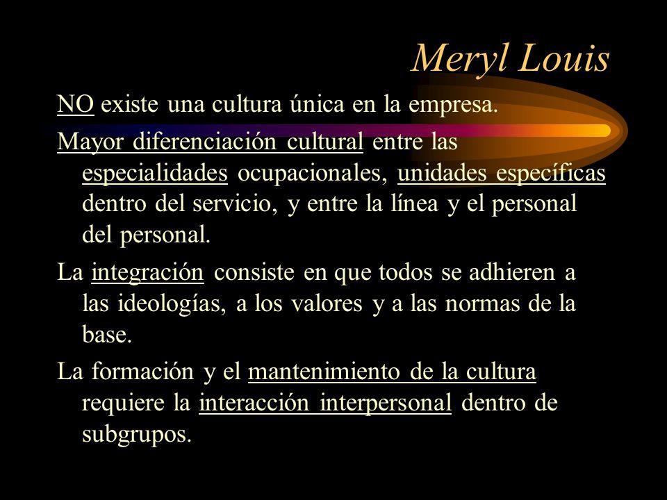 Meryl Louis NO existe una cultura única en la empresa.
