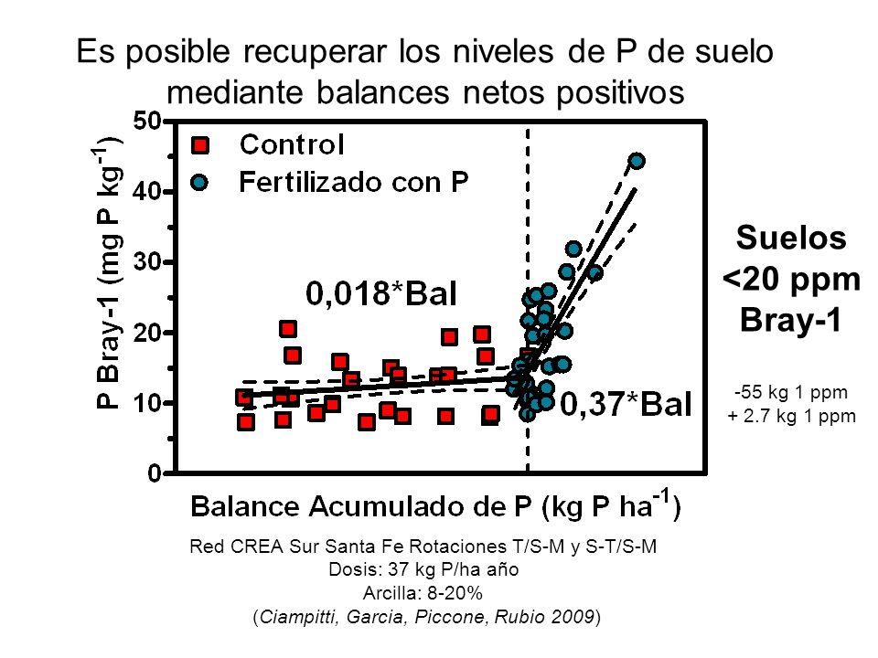 Es posible recuperar los niveles de P de suelo mediante balances netos positivos