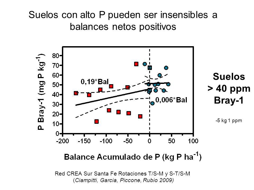 Suelos con alto P pueden ser insensibles a balances netos positivos