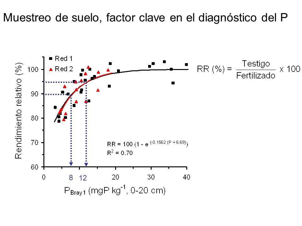 Muestreo de suelo, factor clave en el diagnóstico del P