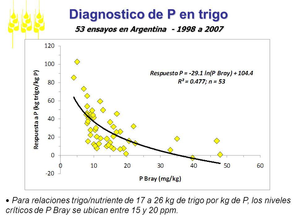 Diagnostico de P en trigo