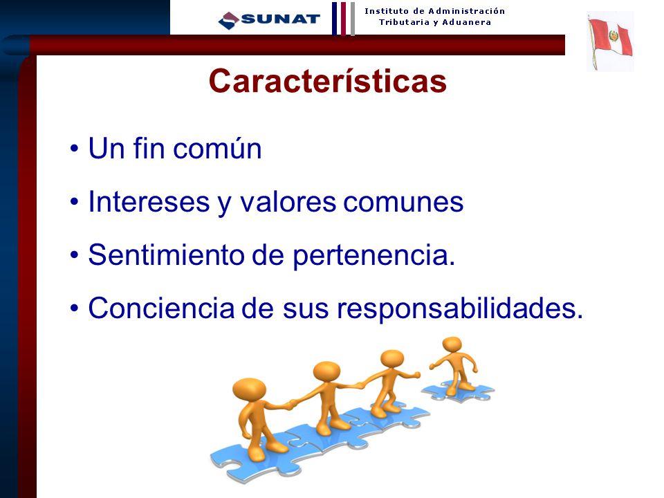 Características Un fin común Intereses y valores comunes