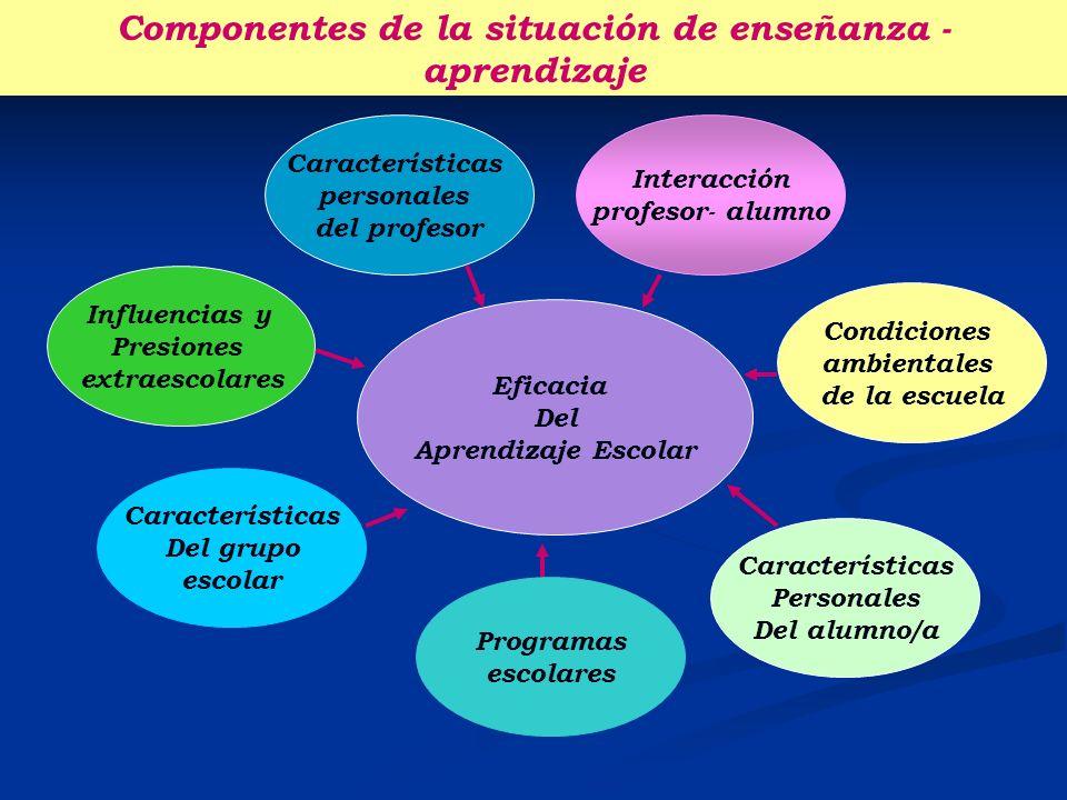 Componentes de la situación de enseñanza - aprendizaje