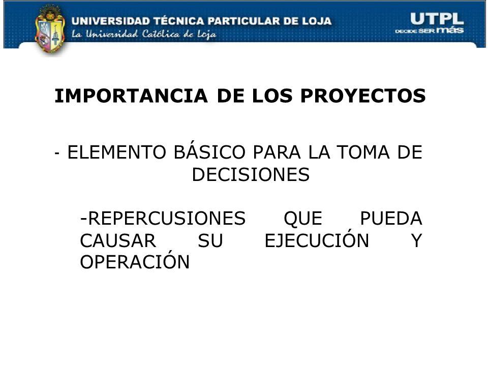 IMPORTANCIA DE LOS PROYECTOS