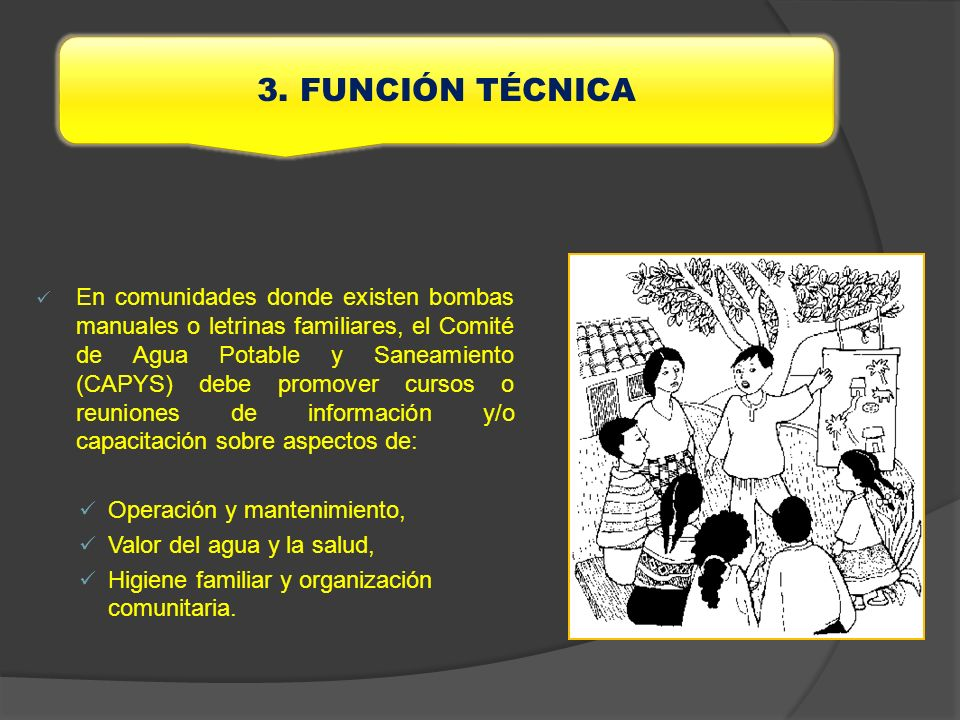 3. FUNCIÓN TÉCNICA