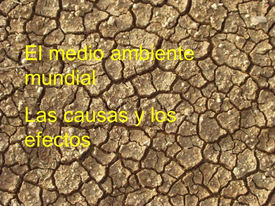 El medio ambiente mundial