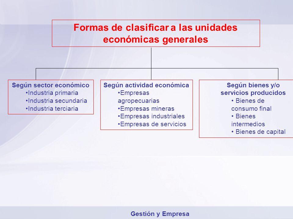 Formas de clasificar a las unidades económicas generales