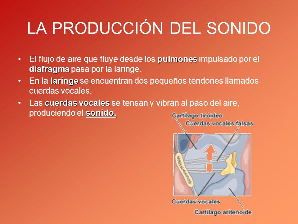 LA PRODUCCIÓN DEL SONIDO