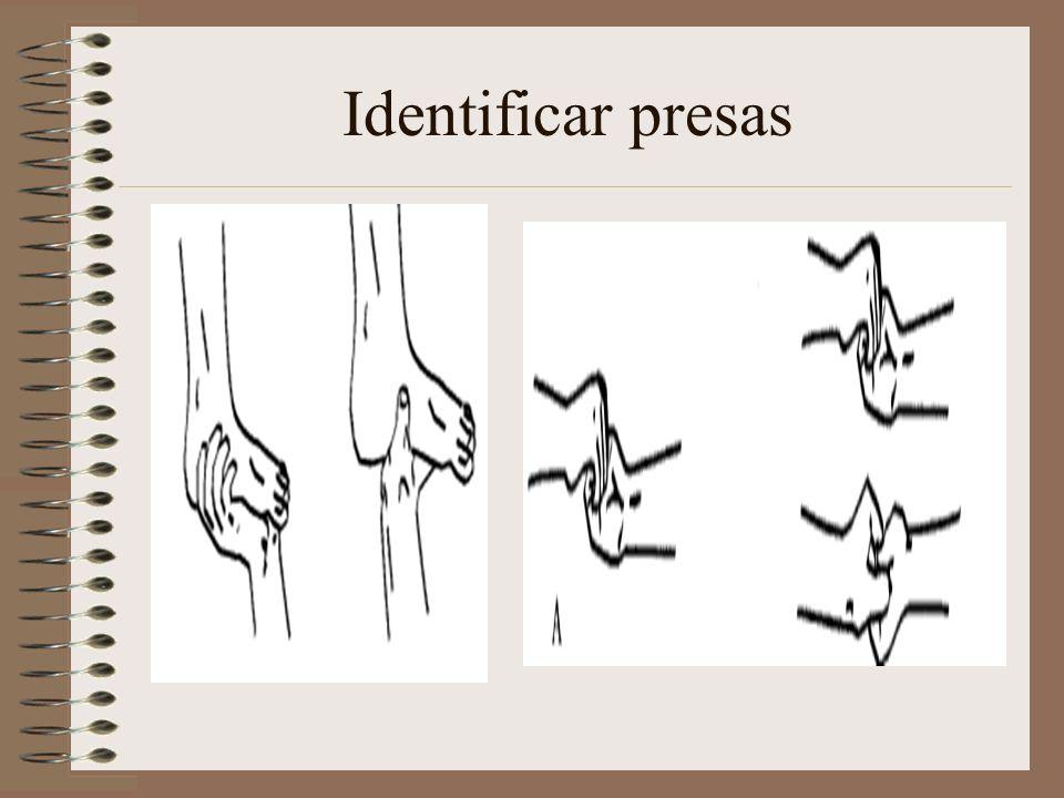Identificar presas