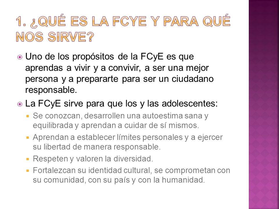 1. ¿Qué es la FCyE y para qué nos sirve
