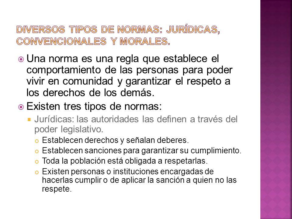 Diversos tipos de normas: jurídicas, convencionales y morales.