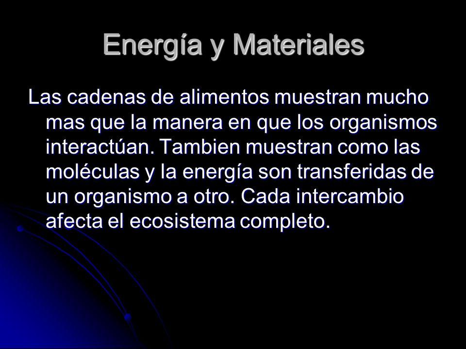 Energía y Materiales