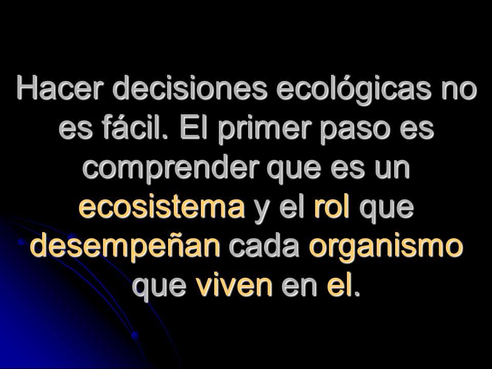 Hacer decisiones ecológicas no es fácil