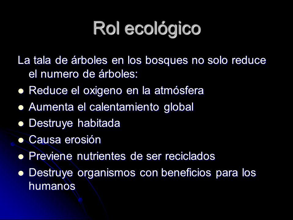 Rol ecológico La tala de árboles en los bosques no solo reduce el numero de árboles: Reduce el oxigeno en la atmósfera.